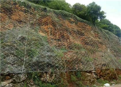 湖南主动防护网
