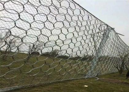 湖南环形防护网