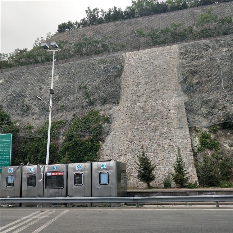温州绿化拦石主动网 虎易网 (2).jpg