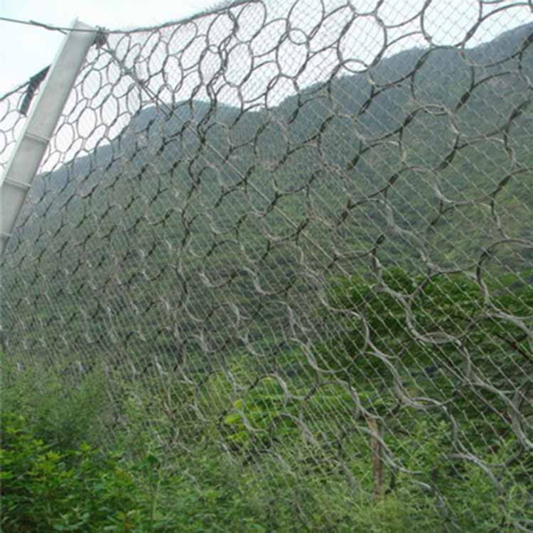 平阳生态绿化被动网 爱喇叭网.jpg
